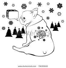 bulldog dog animal french vector illustration stock vector
