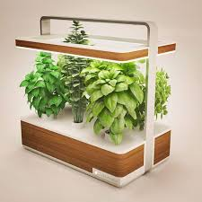 Indoor Gardening Ideas 38 Indoor Gardening Ideas Let S Diy Home