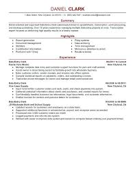 resume summary exles customer service resume summary template exle of resume summary statements