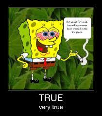 Memes Spongebob - weed created spongebob marijuana memes weed memes