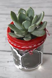 valentine u0027s day gift succulent labels and tags yesterday on tuesday