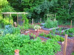 Kitchen Garden Designs Creating A Raised Bed Garden