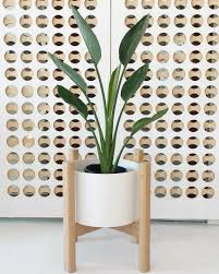 shopping guide the 10 best planters to buy online we are scout