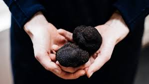 Where To Buy Truffles Online Truffle 101 How To Stop Worrying And Learn To Love Cooking With