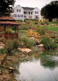Cool Backyard Ideas by Fantastic Yard Ponds In Cool Inexperienced Heavy Backyard Garden