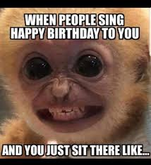 Meme Song - when people sing your birthday song steemit