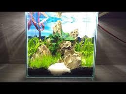 Aquascape Com Nano Cube Aquarium Mountains Dragon Stone Aquascape Youtube