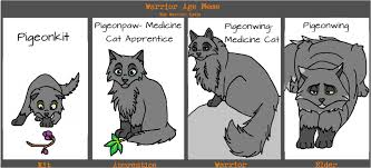 Draw This Again Meme Fail - 17 funniest warrior cats meme images and pictures greetyhunt
