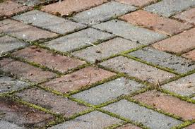 Best Way To Clean Paver Patio Removing Weeds Between Pavers Thriftyfun