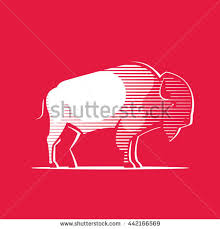 vintage buffalo illustration on white background stock vector