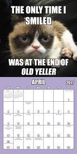 Grumpy Cat Mini Wall Calendar - grumpy cat mini wall calendar 2017 day dream 9781629059754