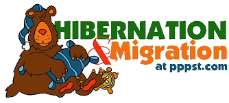 free powerpoint presentations about hibernation u0026 migration for