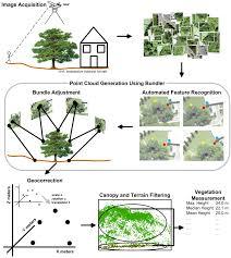 remote sensing free full text remote sensing of vegetation