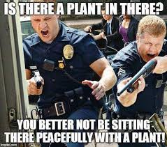 Law Enforcement Memes - legalize cannabis memes memes for legal weed