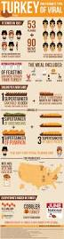 the day of thanksgiving best 25 thanksgiving facts ideas on pinterest thanksgiving fun