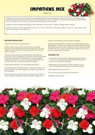 seed kits flowers instructions totalgreen holland