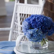hydrangea flowers hydrangea flowers diy