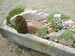succulent rock garden small garden with rock garden ideas in
