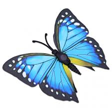 Butterfly Office Decor Diy 12pcs Pvc 3d Butterfly Wall Decor Stickers For Bedroom Office