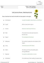primaryleap co uk life cycle of a flower matching activity