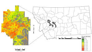 Map Of Helena Montana by A More Detailed Map For Forest Managers Landsat Science