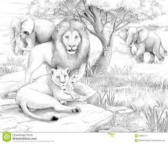 african safari animals coloring pages african animals coloring