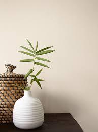 Brauntone Wohnung Elegantes Beispiel Indien Premium Wandfarbe Braun Hellbeige Alpina Feine Farben Elegante