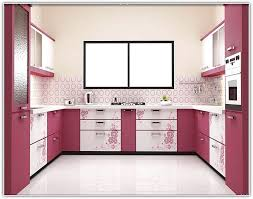 kitchen cabinet india home design