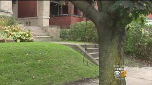 couple finds noose tied to tree in regent square 100 7 star