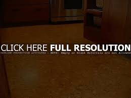 Cork Flooring Kitchen by Backyard Basement Flooring Options Cork Floor Insulation For