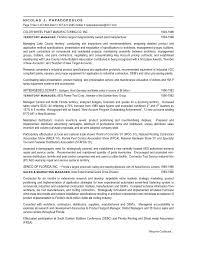 nick s resume 2009