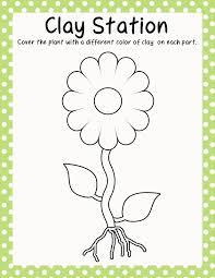 inspiration kindergarten plant worksheets for clothes worksheet