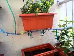hanging apartment balcony garden ideas 499 hostelgarden net
