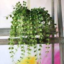 artificial flowers for home decoration 2018 xm1 2 branch simulation plant sag eucalyptus home decoration