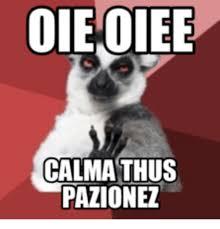 Memes Hola - 25 best memes about hola halo hola halo memes