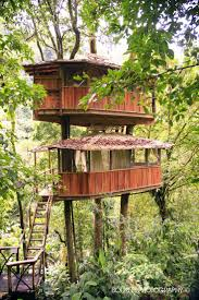 1651 best tree houses images on pinterest treehouses