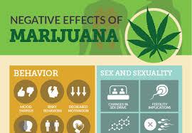 the negative effects of marijuana infographic logicum nevative effect of mariguana