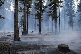 California Wildfires Highway Closures by Video Progress Of 176 Acre Emerald Fire Near South Lake Tahoe