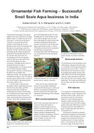 ornamental fish farming successful small scale aqua business in