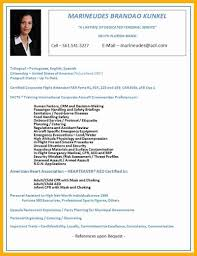 flight attendant resume no experience resume for your job