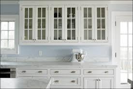 Glass Cabinet Doors Kitchen Innards Interior - Glass kitchen cabinet door