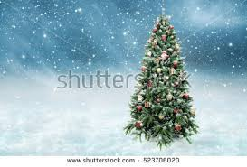 beautiful decorated christmas tree present boxes stock photo