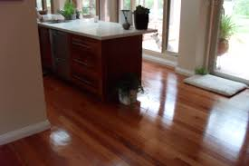 Sydney Laminate Flooring Sydney Blue Gum Flooring Hardwood Flooring Hardwood Timber