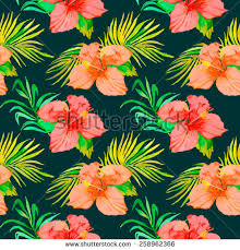 Tropical Plants Pictures - hibiscus tropical plants seamless pattern exotic stock vector