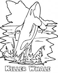 coloring page orca coloring pages printable whale page 24027