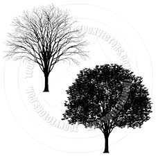 lime silhouette detailed tree silhouette by koq creative toon vectors eps 42843