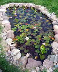 Garden Designs For Small Backyards 35 Impressive Backyard Ponds And Water Gardens Amazing Diy