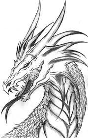 top cool dragon drawings head drawing