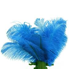 Peacock Feather Home Decor Amazon Com Sodial Tm 10pcs Home Decor Blue Ostrich Feathers