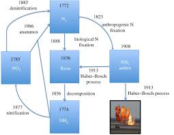 History Of The Nitrogen Cycle Philosophical Transactions Of The